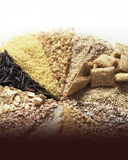 Wholesale of cereals and food
